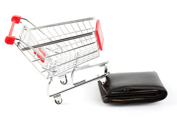 Shopping cart and purse