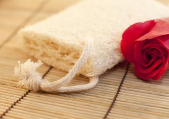 éponge luffa naturelle et rose rouge
