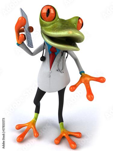 Leinwanddruck Bild Grenouille docteur