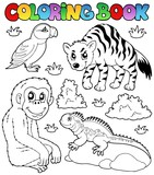 Fototapety Coloring book zoo animals set 2