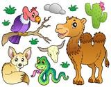 Desert animals collection 1