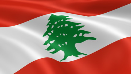 Lebanese flag in the wind. Part of a series.