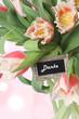 Fototapete Blume - Blume - Blume
