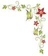 Ranke, flora, Blumen, Blüten, grün, orange, rot