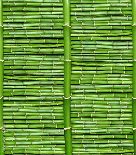 Fototapeta bamboo - wallpaper