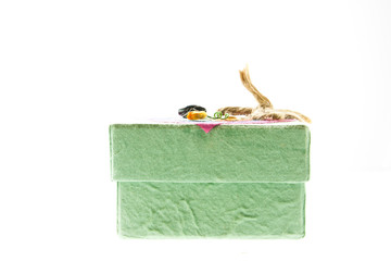 green mulberry paper gift box on white background
