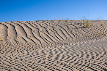 Sand dune with same marram grass and blue sky