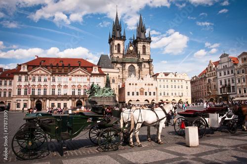 obraz PCV Prague
