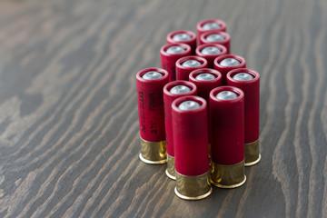 Several shotgun shells standing up