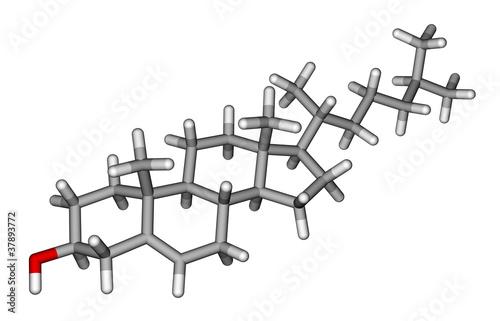 Cholesterol sticks molecular model