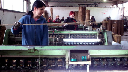 factory for processing marsh cane