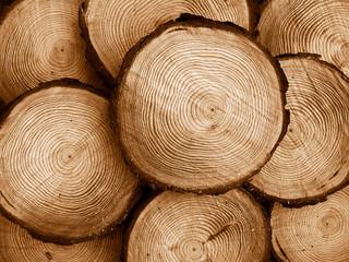 sawed pine wood