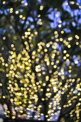 Defocused abstract background of the lights in yellow