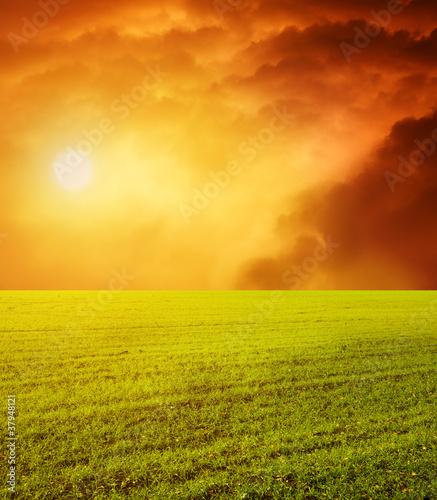 Fototapeta beautiful sunset