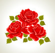 Roses. Illustration with flowers bouquet. Color design elements.