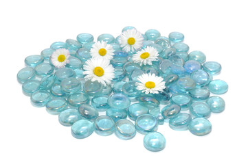 Beautiful Daisy Flowers with Blue Glass Stones Isolated on White