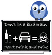 Do not be a birdbrain drink and drive message
