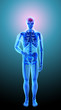 Human anatomy - headache