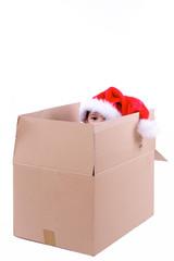 enfant dans carton d'emballage avec chapeau de noel