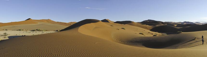 Sandwüste Panorama