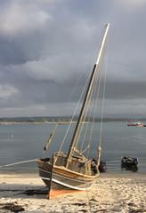Dorna velera