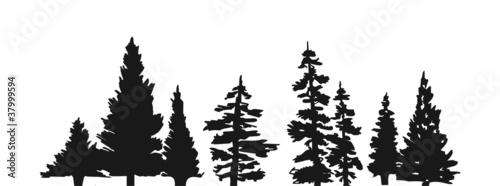 Trees - 37999594