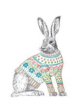 Kaninchen im Pullover