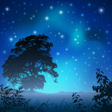 A Night Sky with Big Tree and Stars