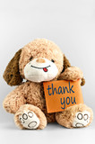Thank you message and toy