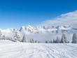 Fototapeten,winter,schnee,natur,baum