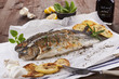 Grilled trouts. - 38028991