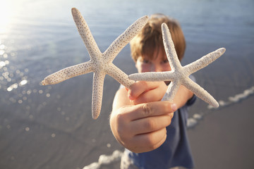 Portrait of boy holding two starfish on beach