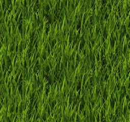 Tiling texture – Grass