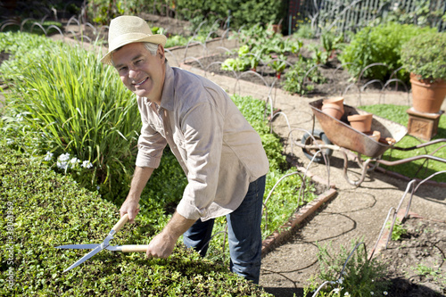 Portrait of smiling senior man pruning hedges in garden