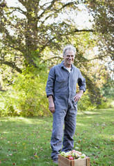 Portrait of smiling senior man wearing coveralls in apple orchard