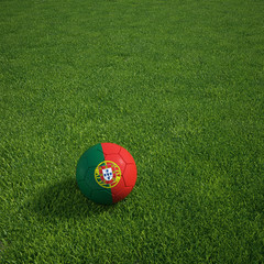 Portuguese soccerball lying on a grass field