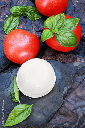 Fresh Caprese Salad Ingredients