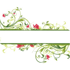 green vector & designe