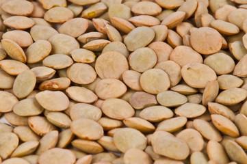 Lentils macro shot