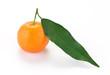 Clementina con foglia