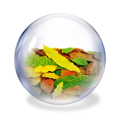 autumn glass ball