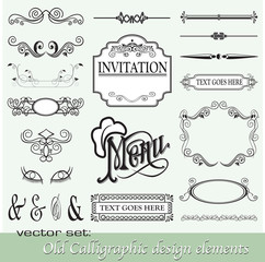 Calligraphic design elements 15