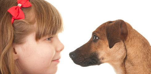 Child and dog,face to face