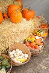 New England family farm roadside stand with pumpkins