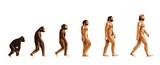 Fototapety Evolution de l'homme couleur