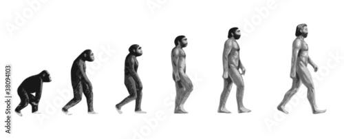 Evolution de l'homme n&b