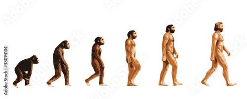 Evolution de l'homme couleur