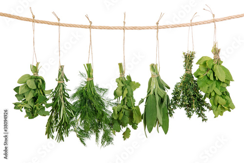 Obraz na Plexi Fresh herbs
