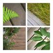 terrasse, patio, maison, jardin, jardinage, plante, bois