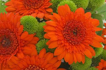 Bouquet from orange gerbera.